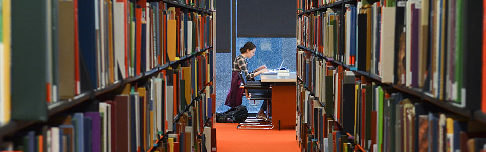 Studying in the Robert B. Haas Family Arts Library