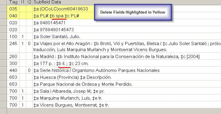 Single Spanish Language Record in WorldCat with Fields to be Deleted