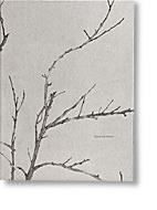 Silence is an Orchard by Lauren Henkin