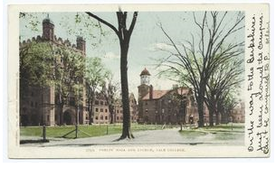 """""""Phelps Hall and Lyceum, Yale Coll., New Haven, Conn."""" New York Public Library Digital Collections"""