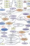 Contextual data map