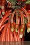 close up of botanical specimin joyapas