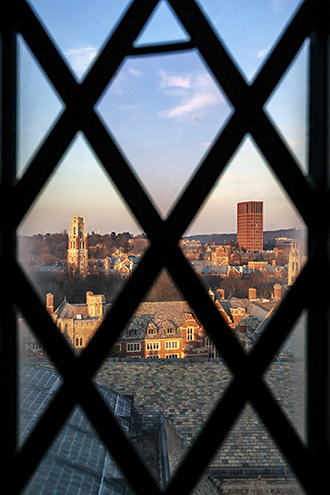 Campus view through diamond-paned window